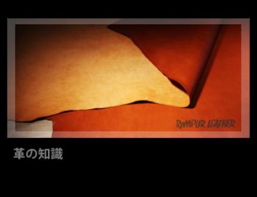 ✱ 革の知識 | ReMPLIR LEATHER | ランプリール・レザー